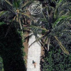 Private Island - Bear Hands (LXXK Remix)
