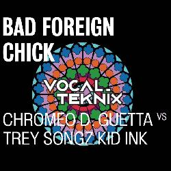 VocalTeknix - Bad Foreign Chick Jealous (Mashup)