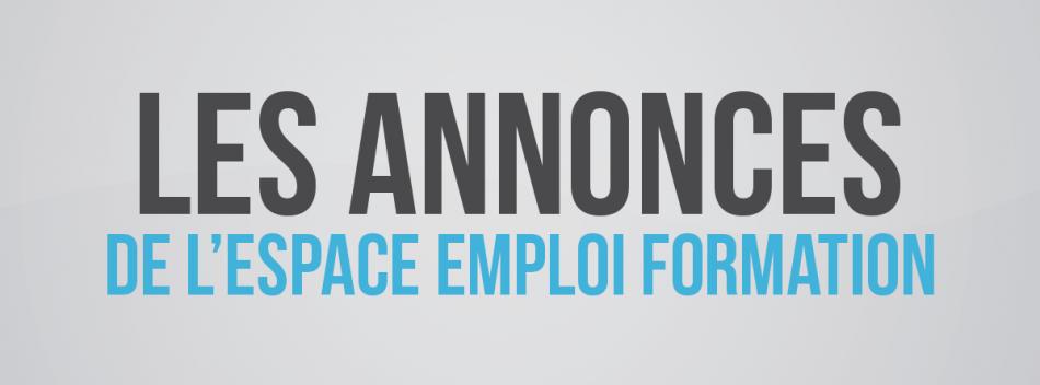 Les offres d emploi de l espace emploi formation de for Emploi espace