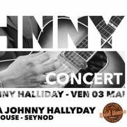 Concert hommage à Johnny Hallyday