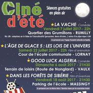 Ciné d'été : Projection du film « Good Luck Algeria »