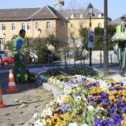 Rumilly: Entretiens des espaces verts, vers de nouvelles pratiques!